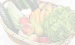 Ernährungsberatung DNA Test Ernährung Fitness